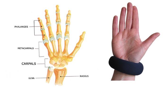 Bones of the hand and wrist anatomy